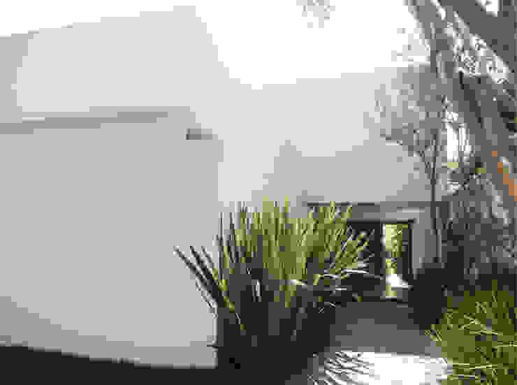 Casa Rath Casas modernas por SAO Arquitetura Moderno