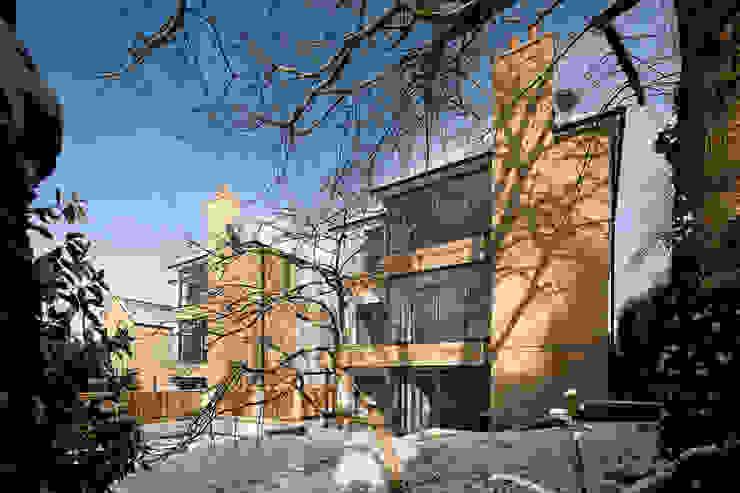 Riggsacre, Corbridge bởi MWE Architects Hiện đại