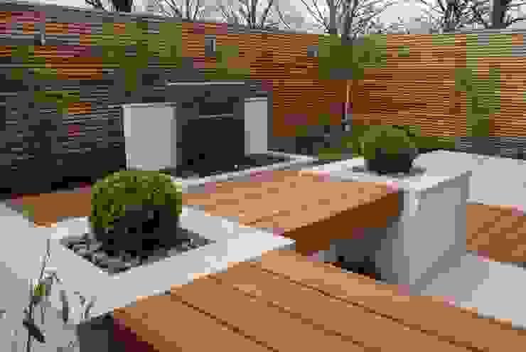 сучасний  by Hannah Collins Garden Design, Сучасний