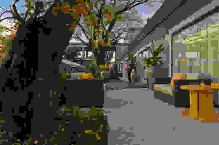 Vườn phong cách tối giản bởi Folha Paisagismo Tối giản
