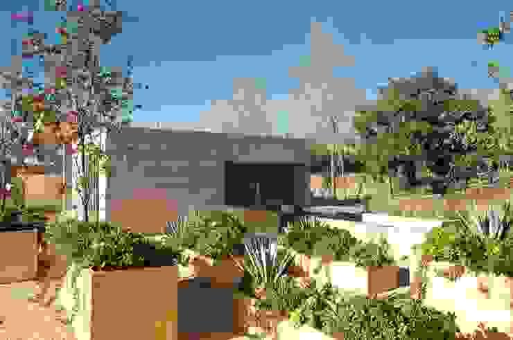 AV Residence Modern style gardens by Gantous Arquitectos Modern
