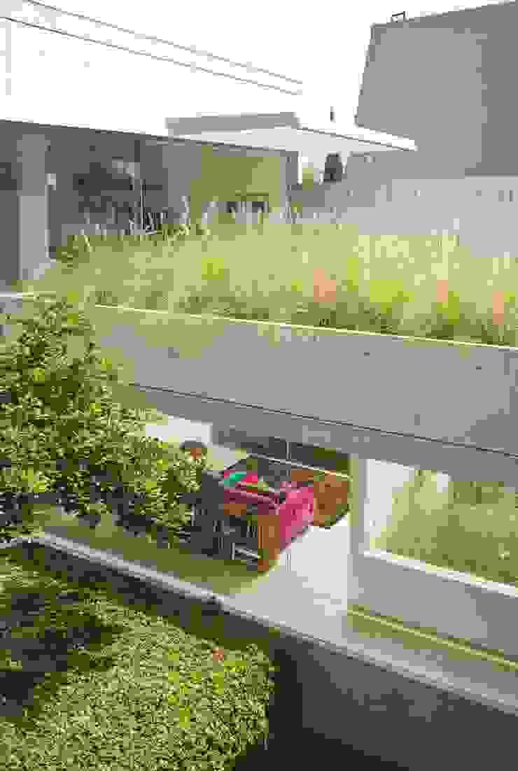 Modern Terrace by Gantous Arquitectos Modern