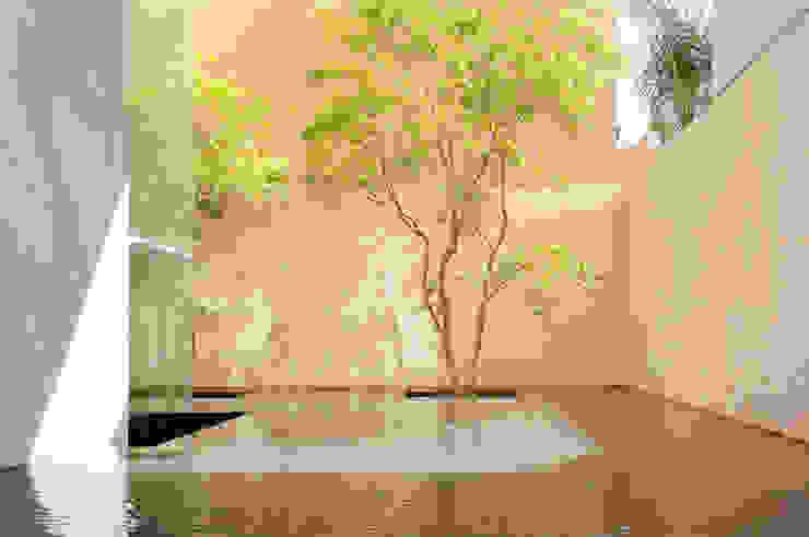 Modern style gardens by Gantous Arquitectos Modern