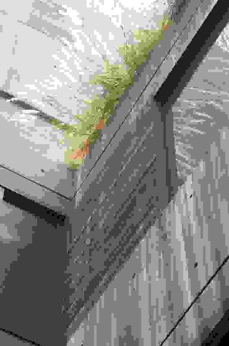 Modern Walls and Floors by Gantous Arquitectos Modern
