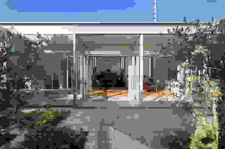 With 3 Kids, 2 Dogs and the Jungle: 森下建築総研/Osamu Morishita Architect & Associatesが手掛けたです。,