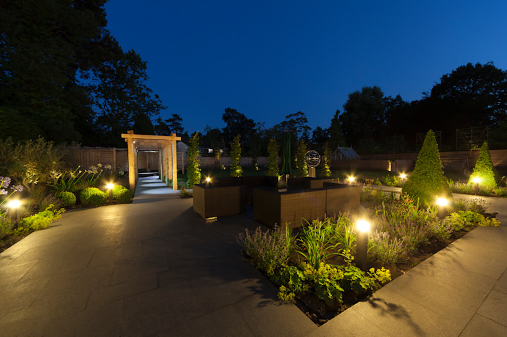 A contemporary Surrey garden Jardines modernos de Forest Eyes Photography Moderno