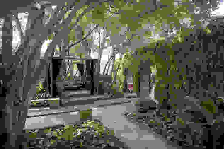 Vườn phong cách hiện đại bởi ricardo pessuto paisagismo Hiện đại