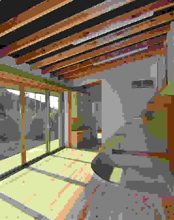 茶畑の家 原 空間工作所 HARA Urban Space Factory 窓&ドア窓