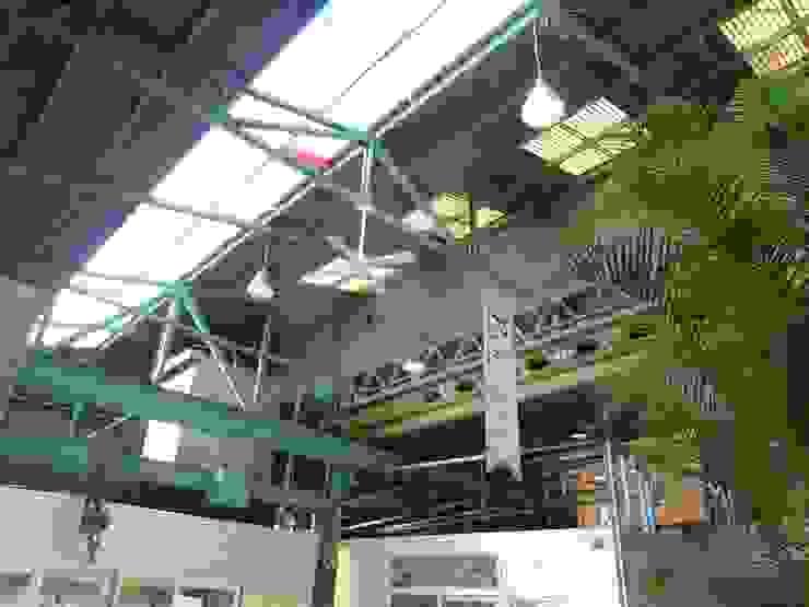 トップライト オリジナルな商業空間 の アーテック・にしかわ/アーテック一級建築士事務所 オリジナル