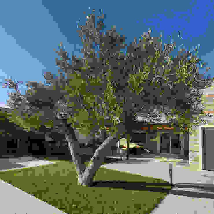 Studio Bugna Jardines de estilo moderno