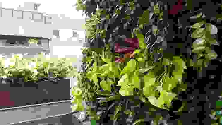 Jardim Vertical Jardins tropicais por Viviane Menescal Tropical