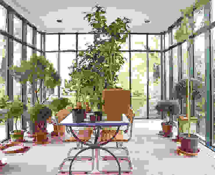 Projekty,  Ogród zimowy zaprojektowane przez v. Bismarck Architekt, Nowoczesny