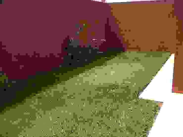 Privada 40 Jardines minimalistas de Constructora e Inmobiliaria Catarsis Minimalista