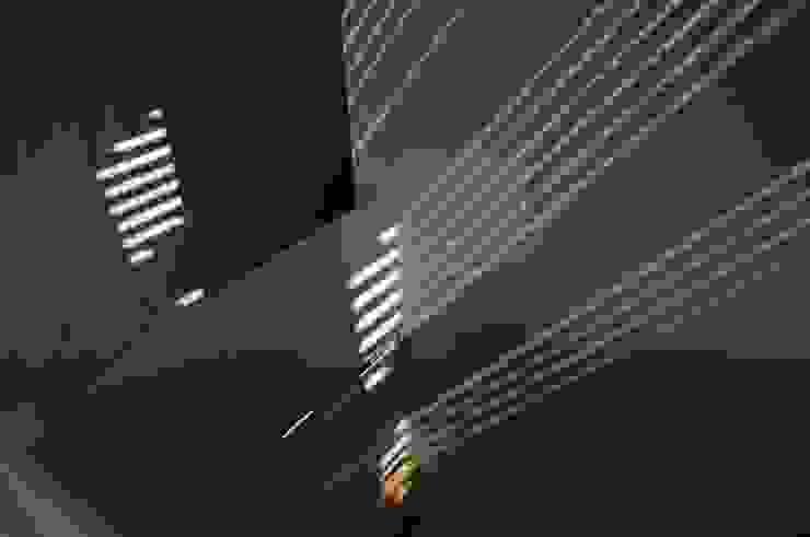 長森の家 和風スタイルの 壁&フローリングデザイン の ELEPHANTdesign 和風