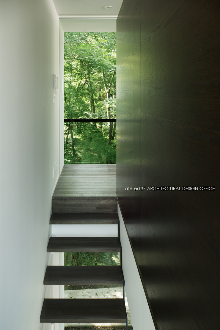 atelier137 ARCHITECTURAL DESIGN OFFICE Modern Corridor, Hallway and Staircase Wood Black