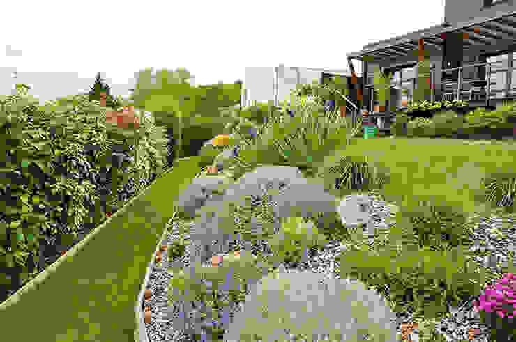 Massif au printemps Jardin moderne par homify Moderne