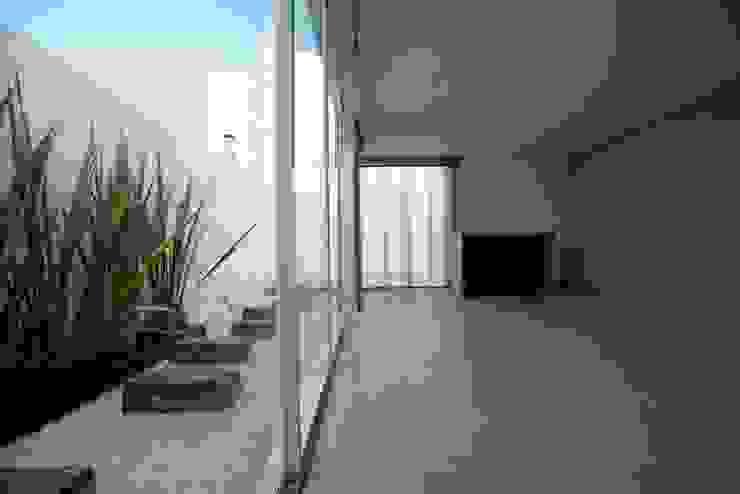minimalist  by JF ARQUITECTOS, Minimalist