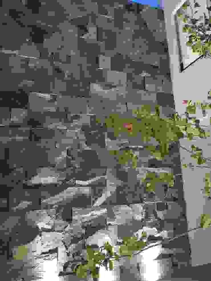 Casa SF Pasillos, vestíbulos y escaleras modernos de acosta arquitecto Moderno