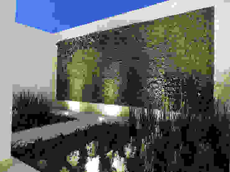 Casa SF Jardines modernos de acosta arquitecto Moderno