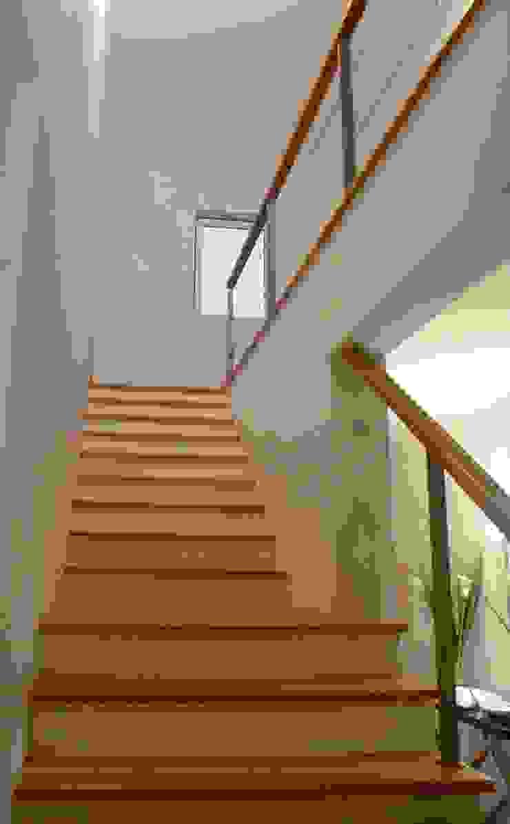 Moradia urbana no alentejo Corredores, halls e escadas clássicos por AGUA-MESTRA, Lda; Clássico