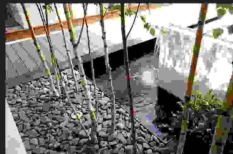 Minimalist style garden by Liquidambar.es Minimalist