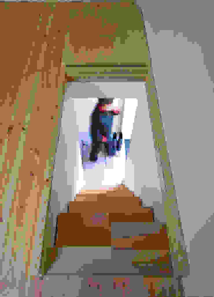 Bukowe 'kacze' schody, widok z poddasza Skandynawski korytarz, przedpokój i schody od Magdalena Zawada Skandynawski