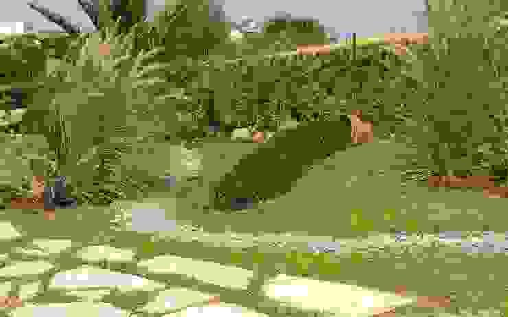 Śródziemnomorski ogród od sihirlipeyzaj Śródziemnomorski