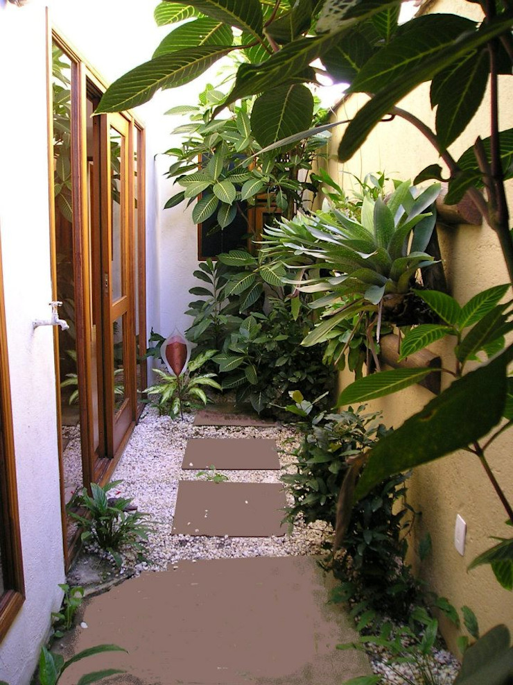 Metamorfose Arquitetura e Urbanismo Tropical style conservatory