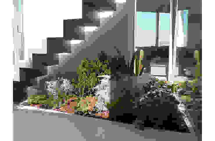 Angolo verde con piante officinali di 8&A Architetti Moderno