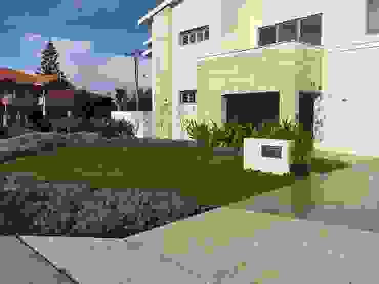 Coastal style Project Artichoke Minimalist style garden