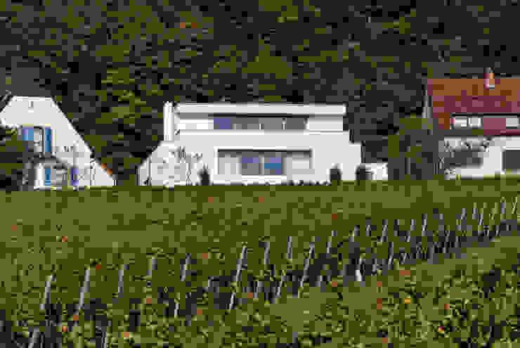 Wohnen zwischen Wald und Reben Minimalistische Häuser von Architekten BDA Becker   Ritzmann Minimalistisch