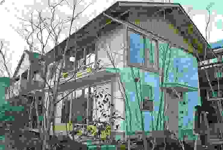 木立に暮らす・・ 二つの表情のある庭のこと・・ 町田市 O邸の庭づくり モダンな庭 の 野草の庭・茶庭づくり 風(ふわり) モダン