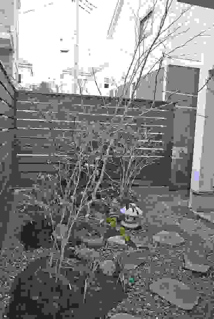 北側にも山の樹木を植栽。 モダンな庭 の 野草の庭・茶庭づくり 風(ふわり) モダン