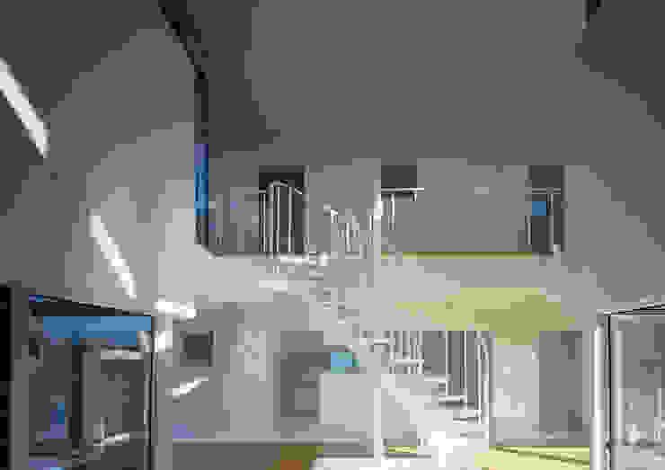 Modern corridor, hallway & stairs by W.D.A Modern
