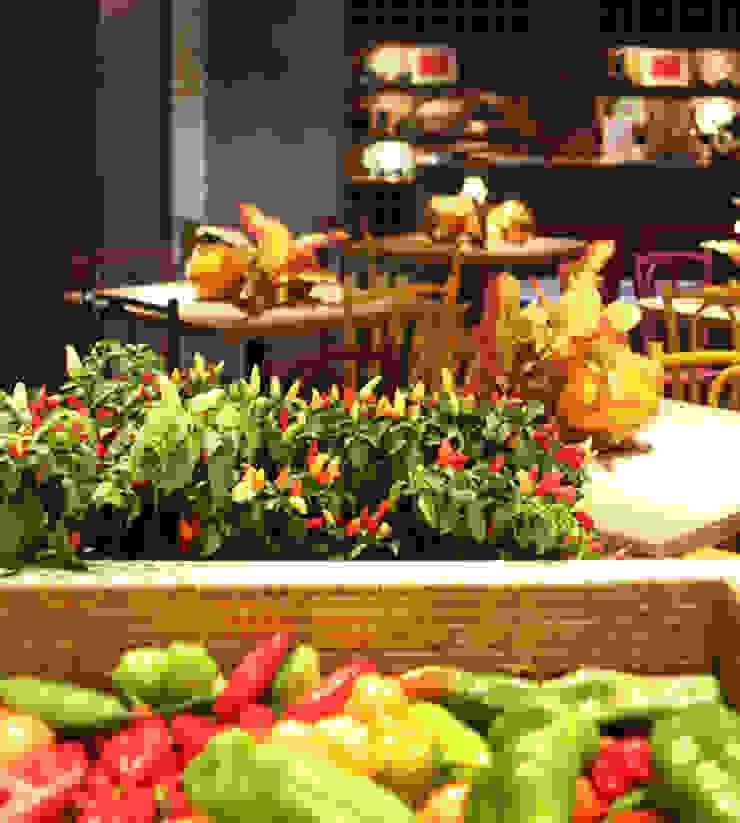 CARMELLO ARQUITETURA ห้องครัวเครื่องใช้ในครัว