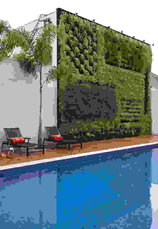 Piscina e Jardim Vertical Studio Claudia Pimenta e Patricia Franco Decoração de Interiores Jardins modernos