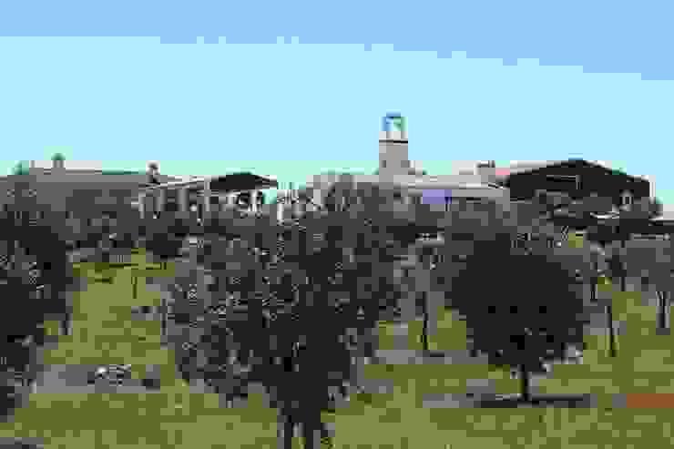 Casas de estilo rural de José Baganha & Arquitectos Associados Rural