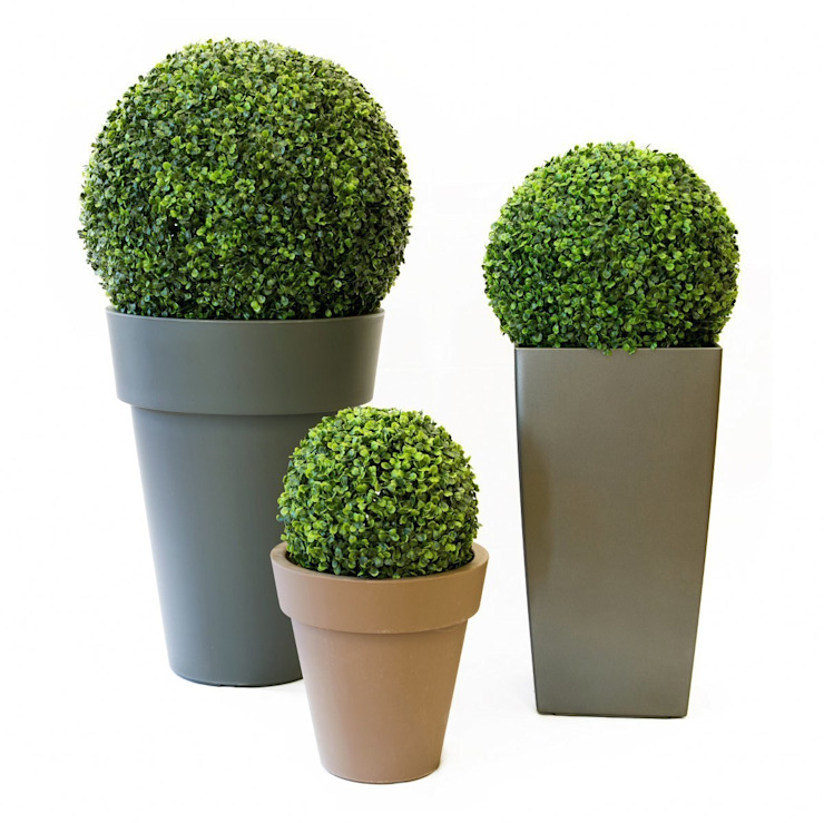 Artificial Boxwood Ball Topiary de Evergreen Trees & Shrubs Moderno