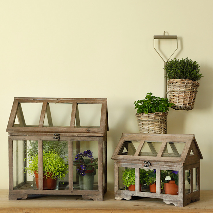 Large Glasshouse Terrarium Oleh ELLA JAMES Klasik