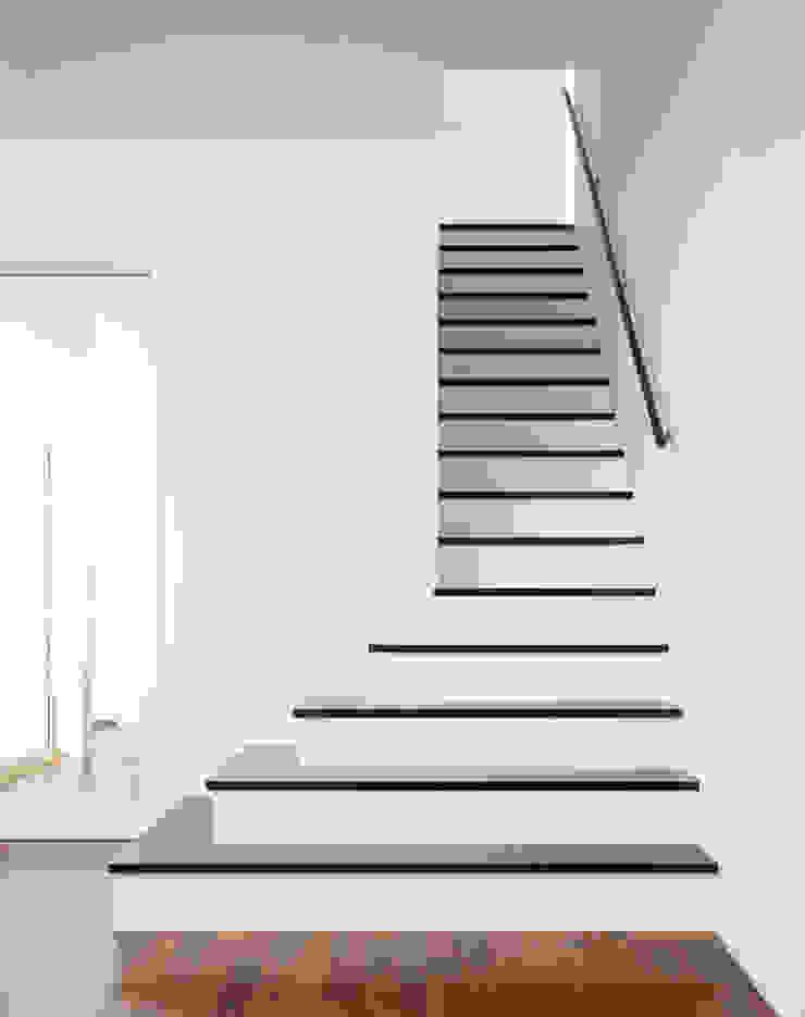 階段 モダンスタイルの 玄関&廊下&階段 の 久保田章敬建築研究所 モダン