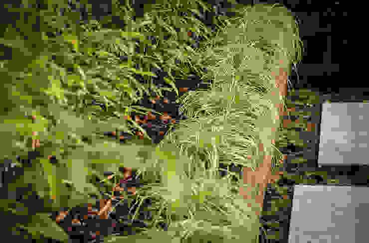 Jardines de estilo  por exTerra | Consulenze ambientali e Design nel verde