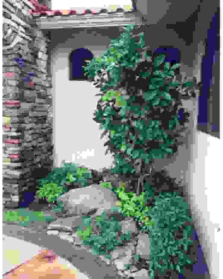 Jardines en campo de golf Jardines tropicales de Tropico Jardineria Tropical