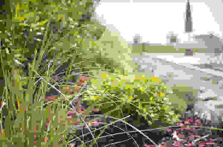 Modern Garden by exTerra   Consulenze ambientali e Design nel verde Modern