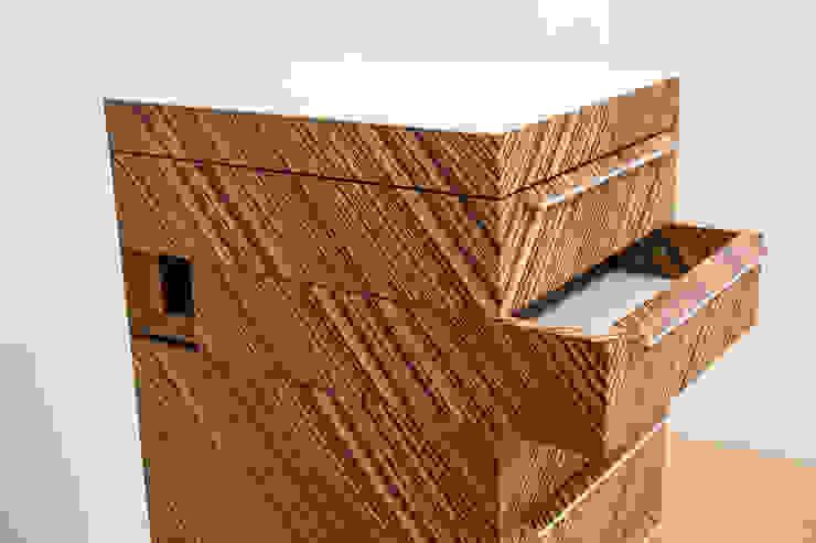 Ladenzuiltje: modern  door meubelmakerij mertens, Modern