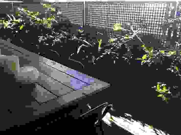 Terraza selvática y de sombra Balcones y terrazas de estilo rústico de Asilvestrada Rústico