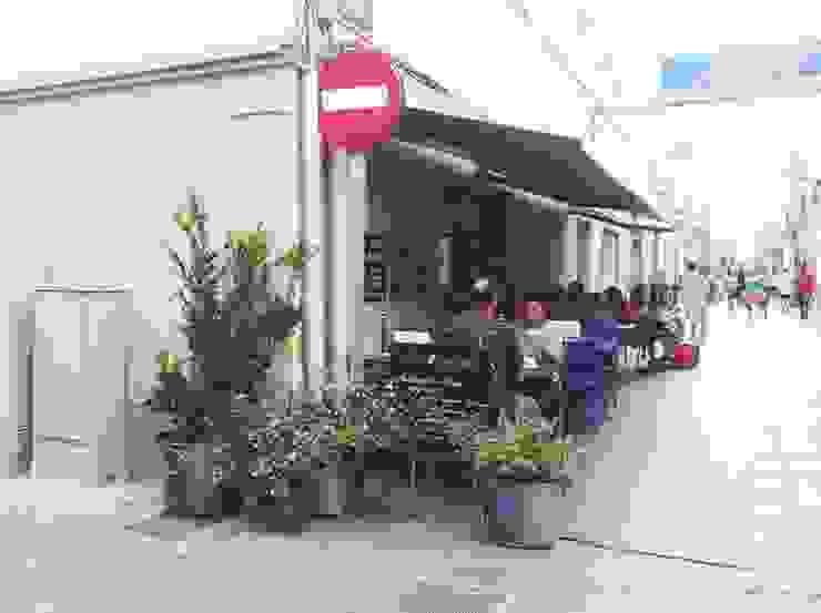 Plantas para la terraza del Bar Bertrán en Badalona Balcones y terrazas de estilo moderno de Asilvestrada Moderno