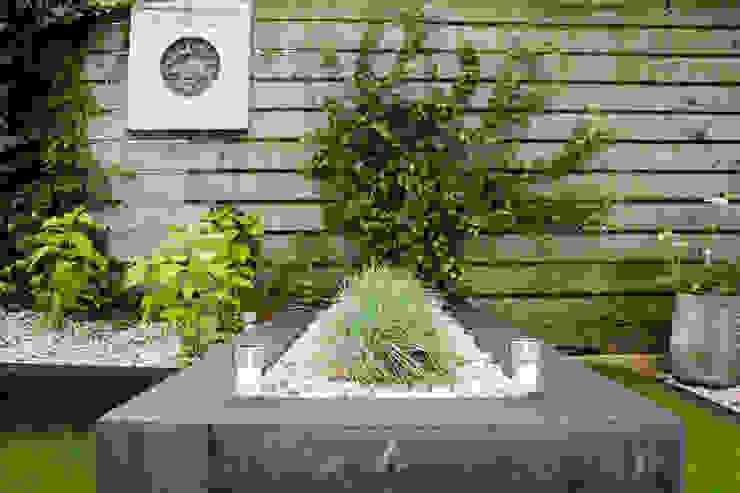 moderne tuin Mediterrane tuinen van Hoveniersbedrijf de bruin Mediterraan