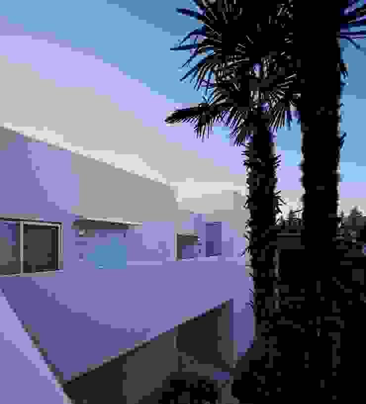 隣家の庭を借景 Moderne Ladenflächen von 久保田章敬建築研究所 Modern
