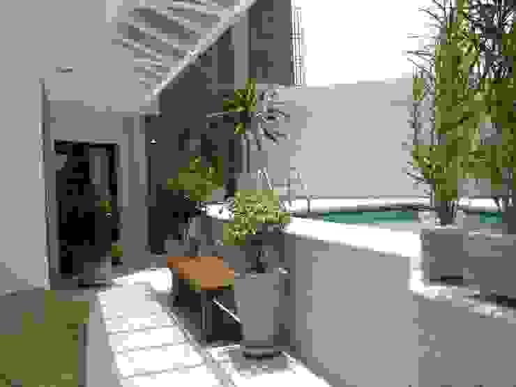piscina da cobertura apos a reforma e vranda:  tropical por Flávia Brandão - arquitetura, interiores e obras,Tropical