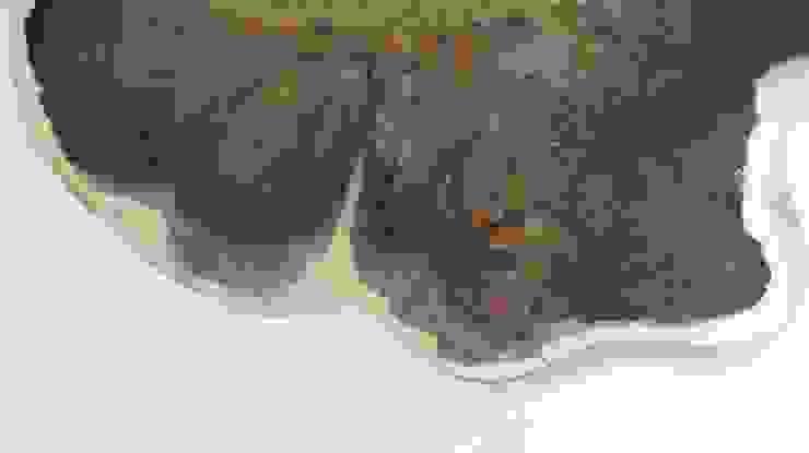 Table of Bog Oak 1600-year-old od Old Wood Design Nowoczesny